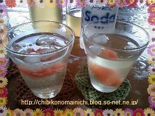 柑橘サワー.jpg